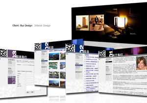 Web design + Flash design + Content management system